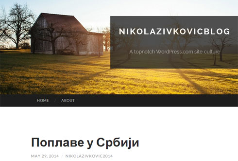n-zivkovic-blog