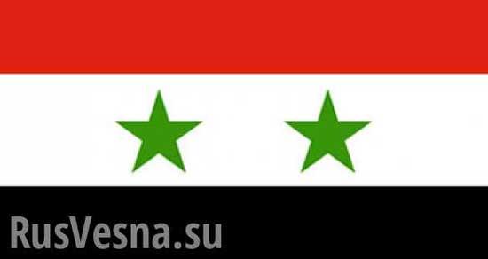 rus-vesna-logo