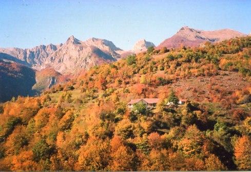 Данашњи изглед завичаја Комнена Бећировића (Љевишта у јесен)