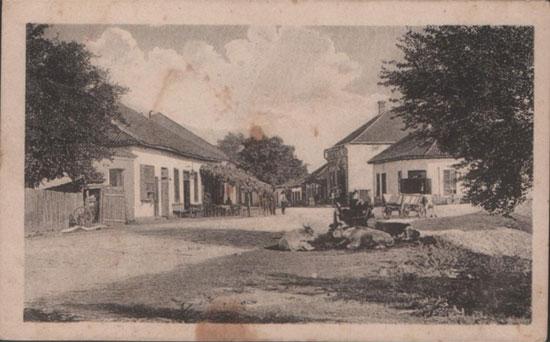 Бачина, родно село заборављеног хероја