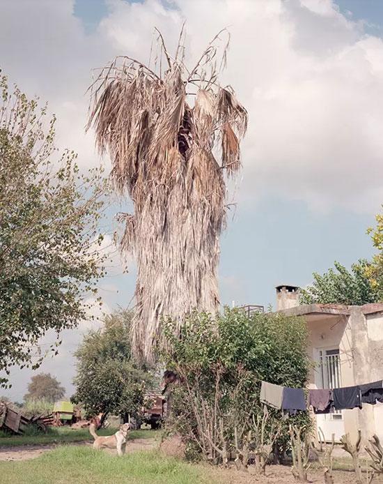 Кућица близу Ровијаце (Фото: Antonis Theodoridis)